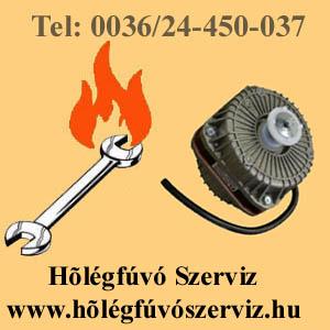 HŐLÉGFÚVÓ SZERVIZ www.holegfuvoszerviz.hu